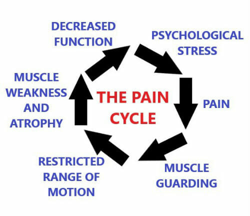The Pain Cycle
